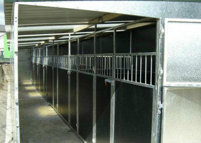 Alpha Dog Kennels